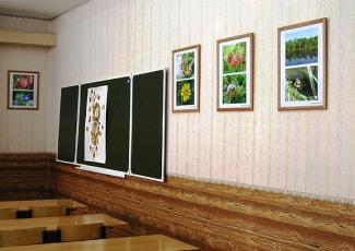 """Кабинет №39 МОУ """"Гимназия №57"""", г. Курган"""